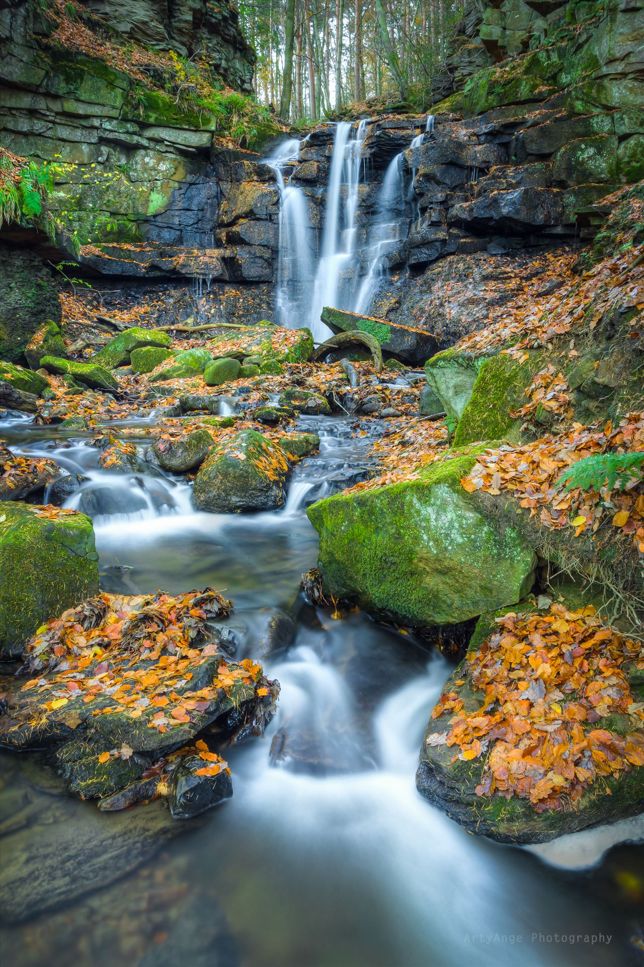 Autumnal Wharnley Burn Waterfall - Wharnley Burn waterfall near Allensford in County Durham by ArtyAnge Photography